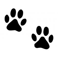 Honden muursticker: 10032 - Kattenpoot of hondenpoot