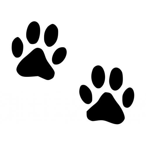 Muursticker 10032 Kattenpoot Of Hondenpoot Muursticker