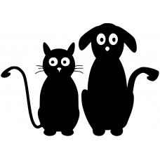 10035 - Kat en hond vrienden