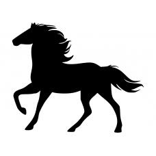 Dieren muursticker: 10082 - Paard in vrijheid