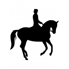 Paardrijden muursticker: 10083 - Dressuurpaard galop