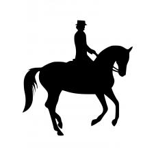 Paarden muursticker: 10083 - Dressuurpaard galop
