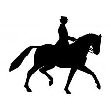 Dieren muursticker: 10090 - Dressuurpaard draf
