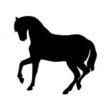 Paarden muursticker: 10091 - Paard