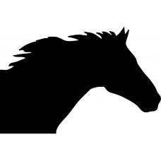 Paarden muursticker: 10092 - Paardenhoofd