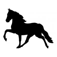 10094 - Paard draf