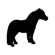 Paarden muursticker: 10095 - Pony