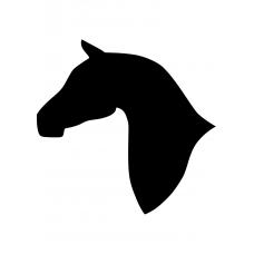 Paarden muursticker: 10097 - Paardenhoofd fier