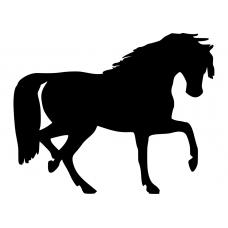 Paarden muursticker: 10105 - Paard passage