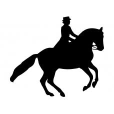 Paardrijden muursticker: 10163 - Dressuurpaard pirouette