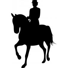 Paardrijden muursticker: 10165 - Dressuurpaard schuin voren