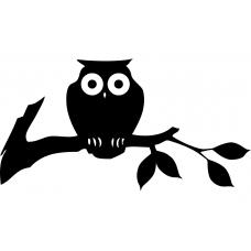 Vogels muursticker: 10067 - Boomtak uil